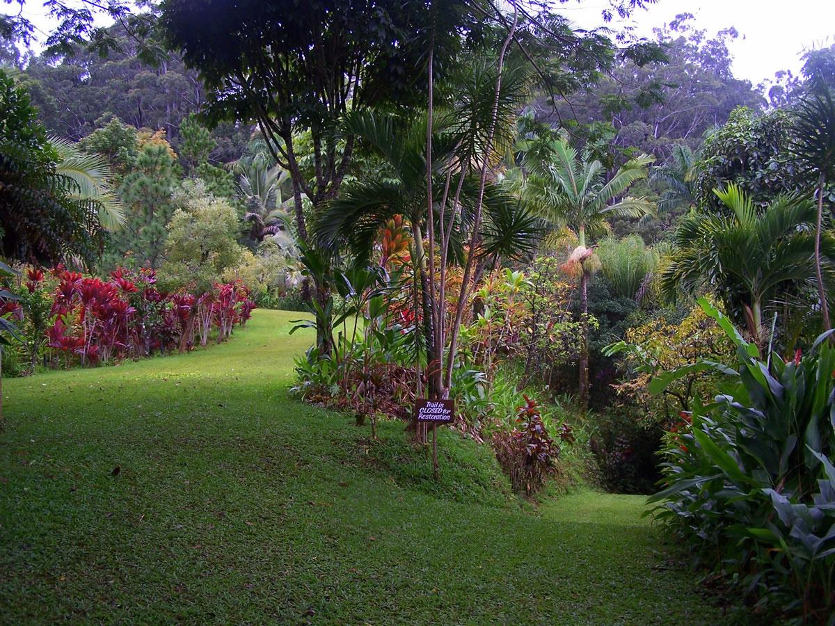 Photos maui garden of eden for Jardin of eden
