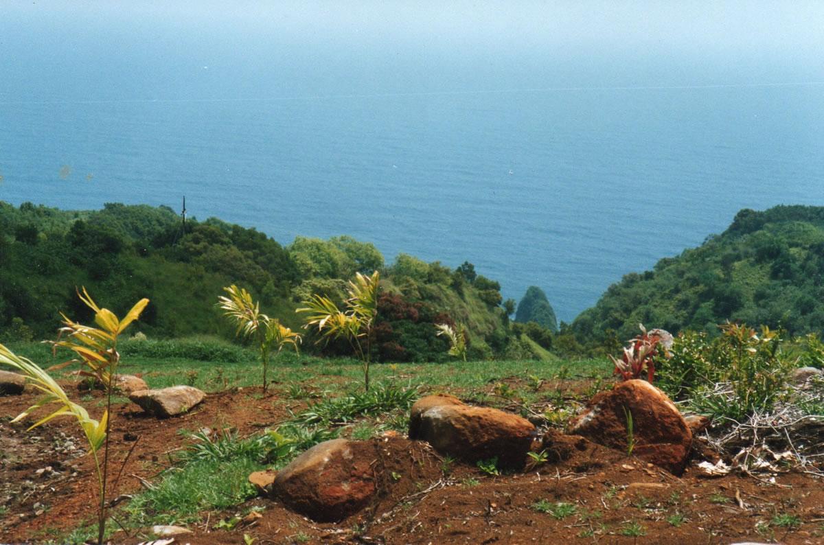 Formative Years Maui Garden Of Eden